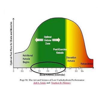 come calcolare le mie macro nella dieta chetogenica